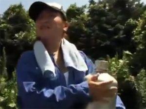 【ナンパ熟女動画】田舎に住んでる農家の五十路豊満巨乳おばさんを捕獲⇒部屋に連れ込み本気セックス!