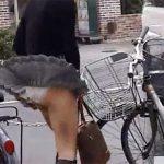 【パンチラ盗撮熟女動画】強風で30代美人妻のスカート捲れるハプニングでパンツが丸見えww